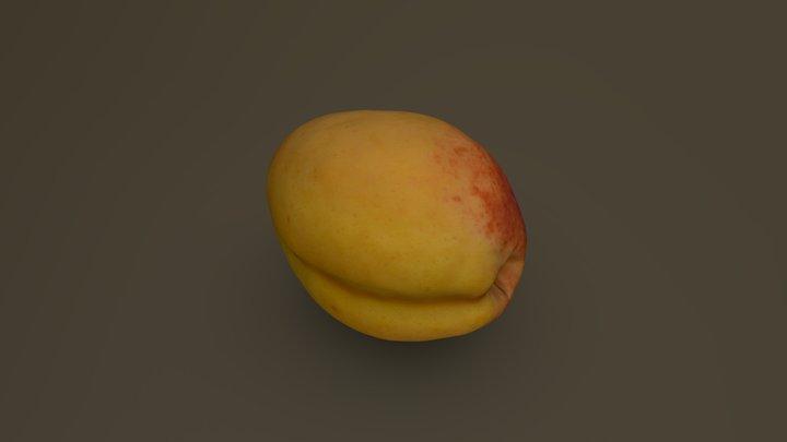 Apricot 10 3D Model