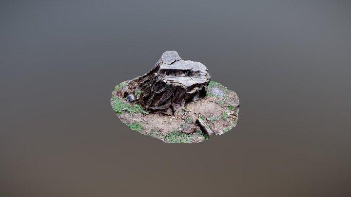 Stomp_001 Another Photogrammetry study 3D Model