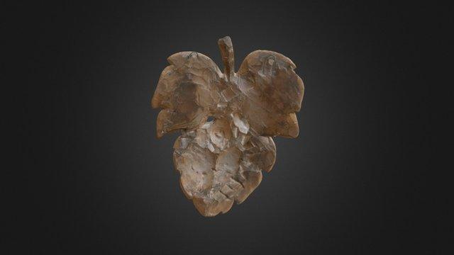 Fig Leaf 3D Model