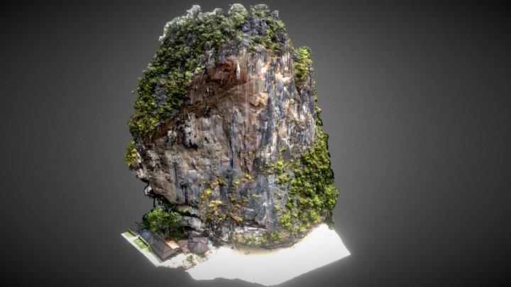 Tonsai Wall 3D Model
