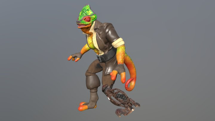 Chameleon Pirate 3D Model