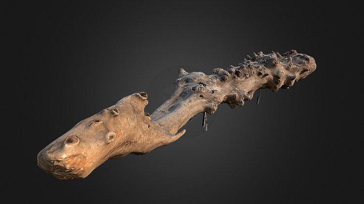 Driftwood 3D Model