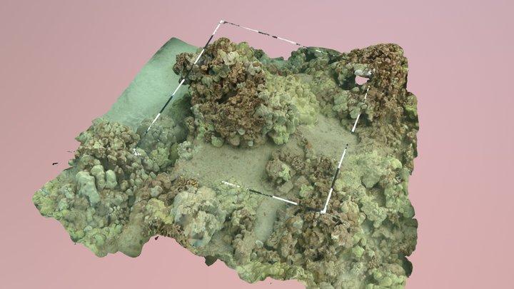 58C Maluaka Point (Shallow) 3D Model