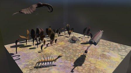 Cambrian 3D Model