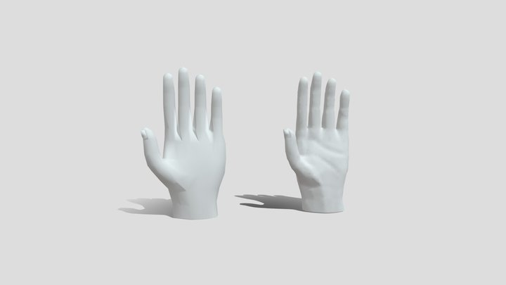 Hands low poly and sculpting 3D Model