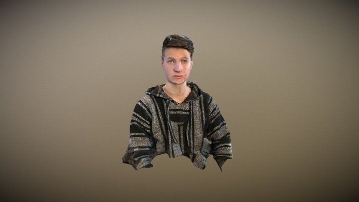 Head Scan Example 3D Model