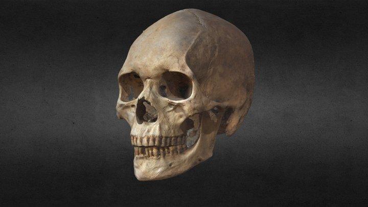 Burial 21 3D Model