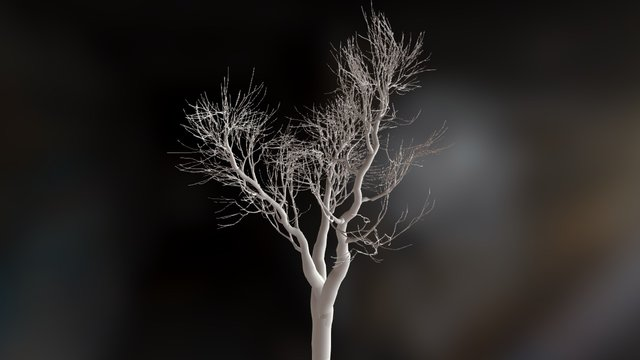 ZBrush leafless tree 3D Model