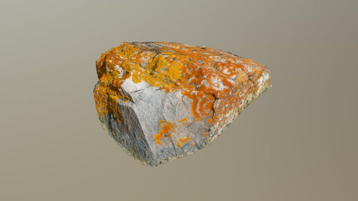 Upper Gros Ventre Rock 04 3D Model