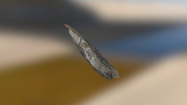 Rambla Cuevas del Almanzora 3D Model