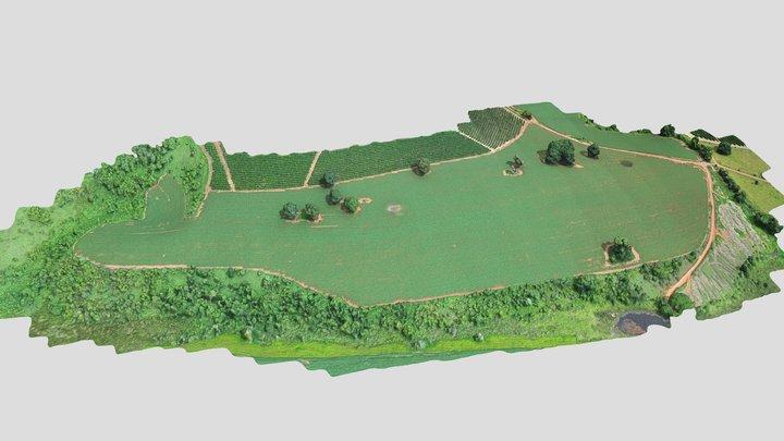 Roça do Adubado (18/12/2019) 3D Model