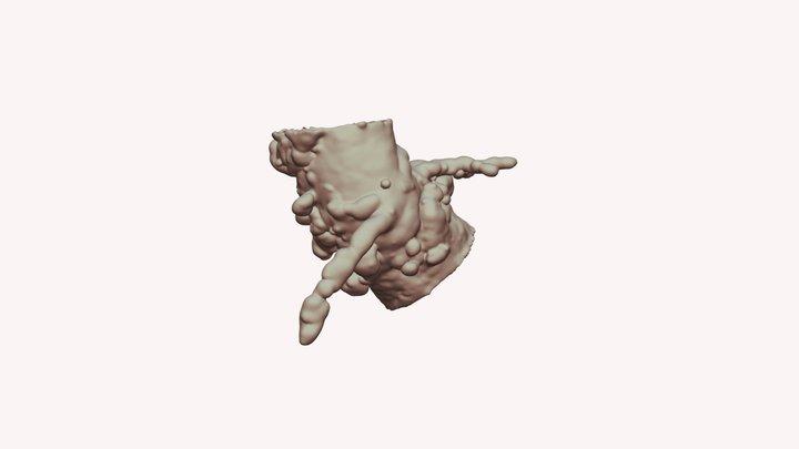 Leak2 3D Model