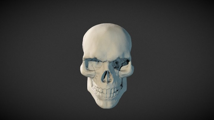 Skull 3D printable (one piece, full close) 3D Model