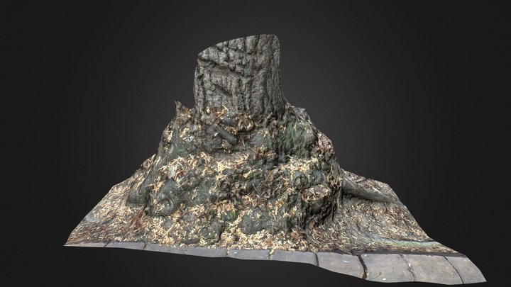 Photo Scan 3D Model