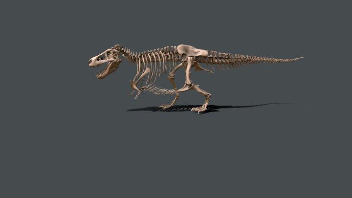 SUE the T. rex 3D Model