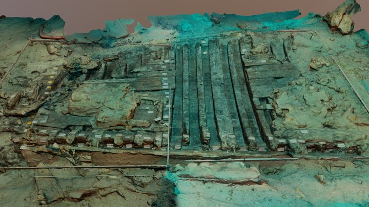 Anémone wreck, Guadeloupe, 2018 3D Model