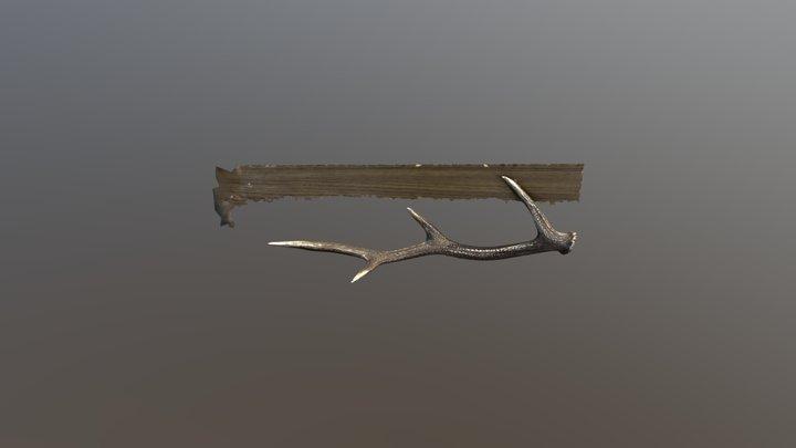 Sika 3D Model