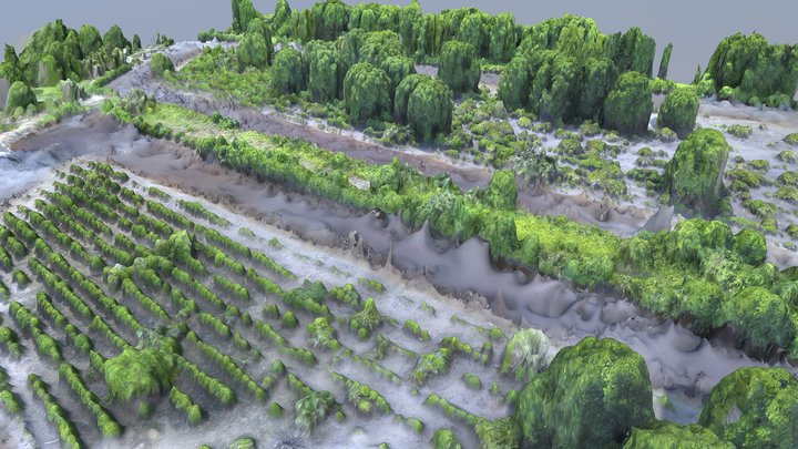 Prawn Aquaculture Ponds in Mangrove Forest 3D Model
