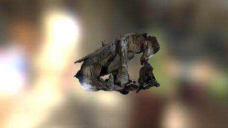 The Column - Jones Quarry Cave, WV 3D Model