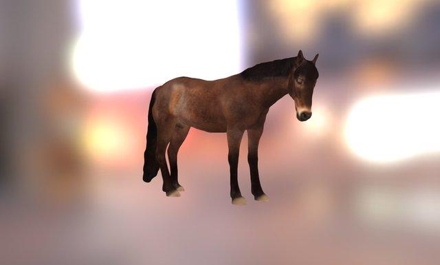 Hero - 3d scanned horse 3D Model