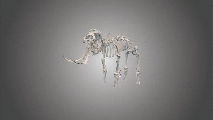 mammoet Dendermonde 3D Model