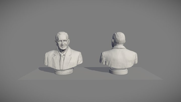 Final Set of Three Busts - Bust Number 1 3D Model