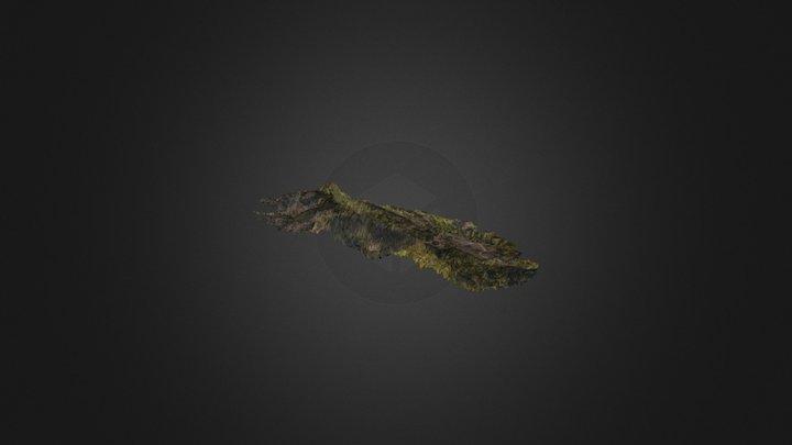 Clots 3D Model