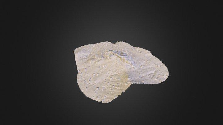 Papago2_Flight3grid 3D Model