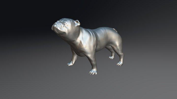 Bulldog 14 3D Model