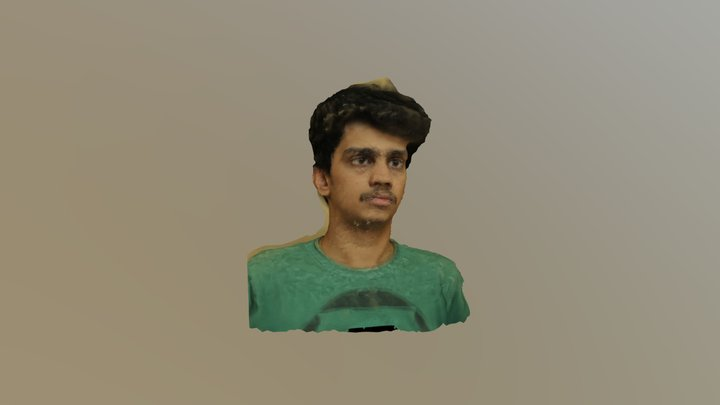 Face Scan Fail 3D Model