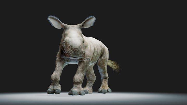 White rhino baby. Pose 3D Model