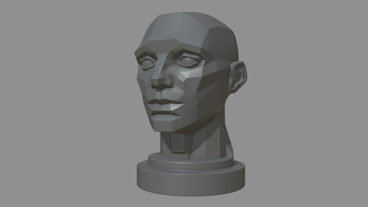 Planes Of The Head 3D Model