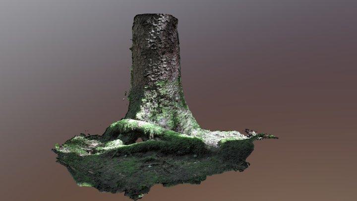 Wald 3D Model