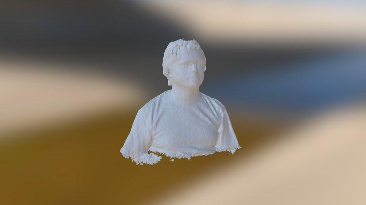 tronc alexandre hauff 3D Model