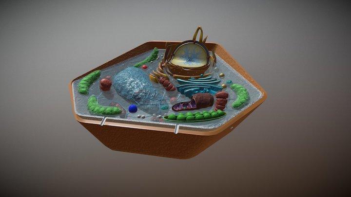 Biology plant cell 3D Model