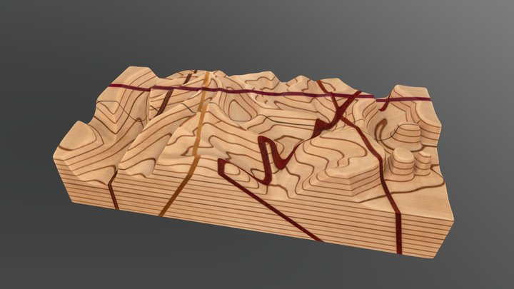 No. 123 - Large topographic map block 3D Model
