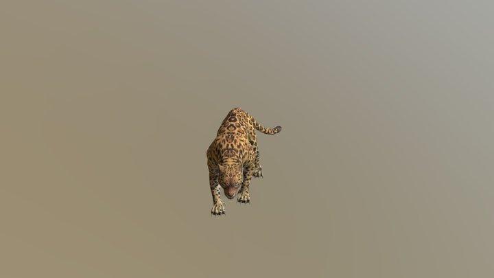 Leopard001-attack03 3D Model