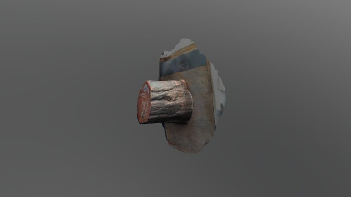 Tree stump test - London 3D Model
