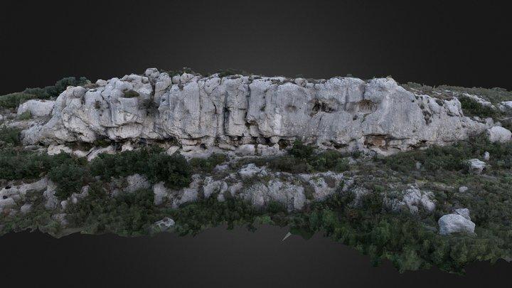 Limestone outcrop 1 3D Model