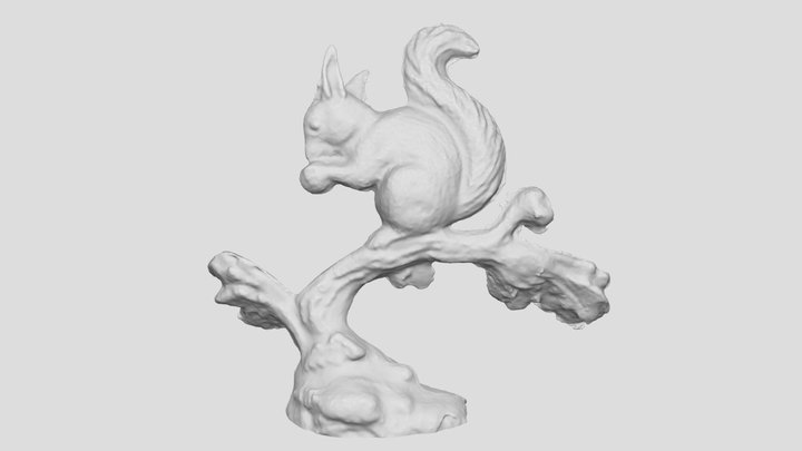 Squirrel on tree 3D scan 3D Model