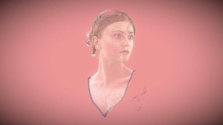 Portrait 1 - 2013 3D Model