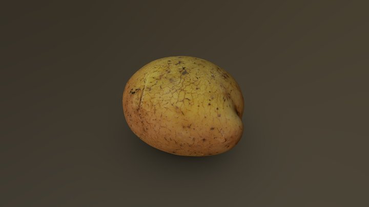 Potato 02 3D Model