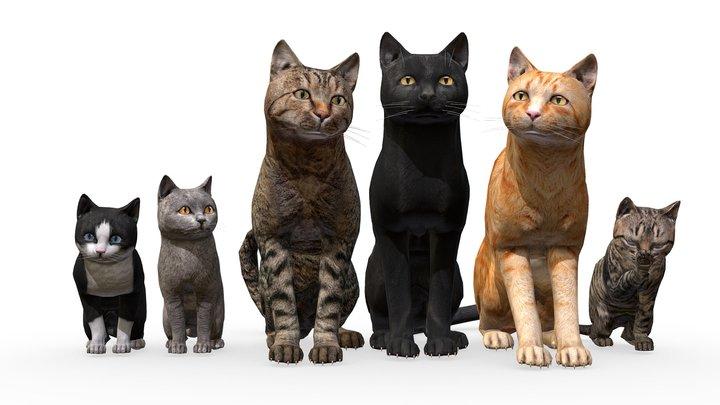 Cat Family 3D Model