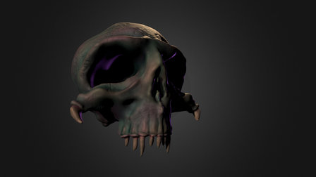 Scull 3D Model