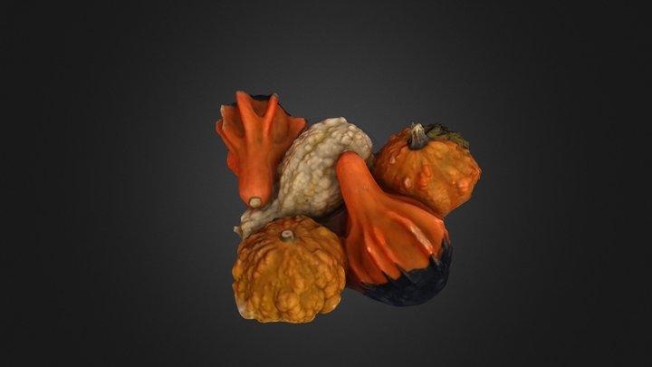 Gourds #3DST20 3D Model