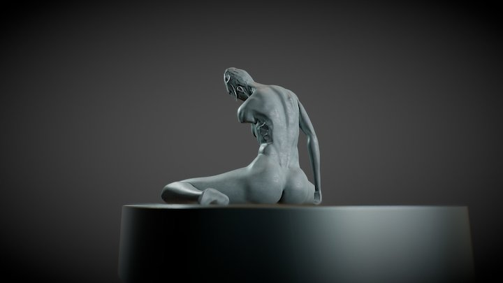 Anatomy study 3D Model