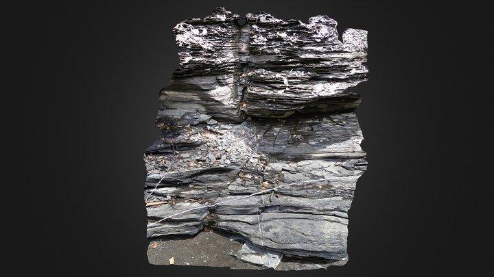 Geology - Joints in Flat Creek Shale 3D Model