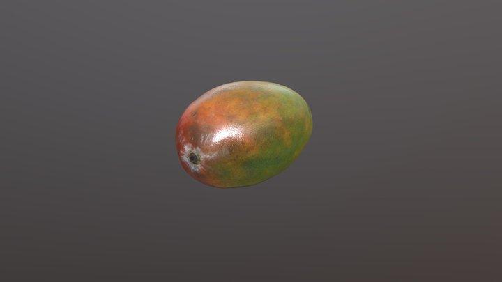 Mango Photogrammetry 3D Model