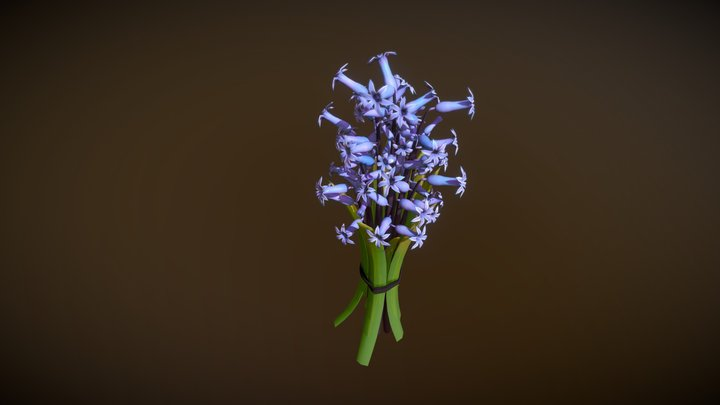 Garden Hyacinth 3D Model