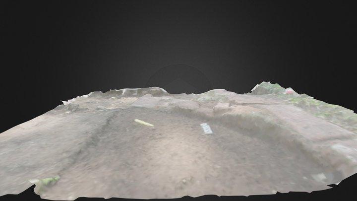 Detalle Excavación UM20 3D Model